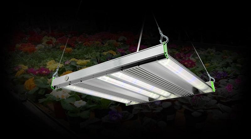 GRO luminaire series lighting